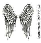 hand drawn vintage closed wings ... | Shutterstock .eps vector #284444762
