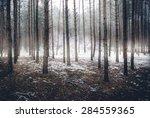 Landscape Of Spooky Winter...