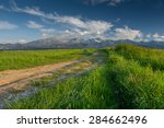 road through green fields with... | Shutterstock . vector #284662496