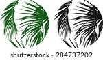 palm leaves in a circle... | Shutterstock .eps vector #284737202
