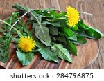 dandelions leaves on a table | Shutterstock . vector #284796875