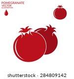 pomegranate. set. vector... | Shutterstock .eps vector #284809142