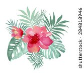 tropical bouquet with flowers... | Shutterstock .eps vector #284818946