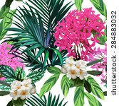 colorful tropical flowers and... | Shutterstock .eps vector #284883032