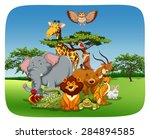 wild animals sitting in the... | Shutterstock .eps vector #284894585
