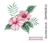 watercolor hibiscuses and... | Shutterstock .eps vector #284982812