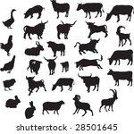 animals vector | Shutterstock .eps vector #28501645
