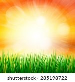 fresh spring green grass with... | Shutterstock . vector #285198722