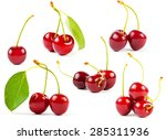 set of sweet cherrys isolated... | Shutterstock . vector #285311936