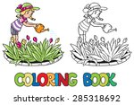 Coloring Book Or Coloring...