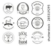 set of agriculture vector label ... | Shutterstock .eps vector #285319295