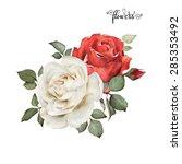 bouquet of roses  watercolor ...   Shutterstock . vector #285353492