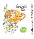 chamomile tea  watercolor  hand ... | Shutterstock .eps vector #285450128