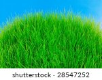 fresh green grass on the top of ... | Shutterstock . vector #28547252