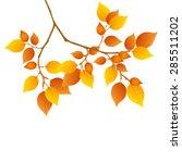 maple foliage icon | Shutterstock .eps vector #285511202