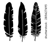 hand drawn bird feathers  black ... | Shutterstock . vector #285627695