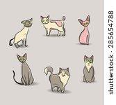 cat set  vector illustration... | Shutterstock .eps vector #285654788