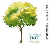 watercolor tree   Shutterstock .eps vector #285794756