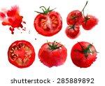 red tomato watercolor vector... | Shutterstock .eps vector #285889892
