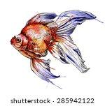goldfish vector watercolor... | Shutterstock .eps vector #285942122