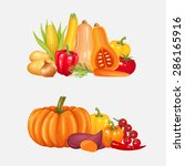 set of fresh vegetables. vector ... | Shutterstock .eps vector #286165916