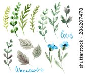 set of flowers painted in... | Shutterstock . vector #286207478