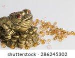 Money Frog   Stock Image Macro