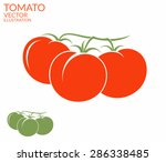 tomato. red and green... | Shutterstock .eps vector #286338485