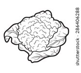 coloring book  cauliflower  | Shutterstock .eps vector #286406288