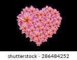 plumeria flower heart isolated... | Shutterstock . vector #286484252
