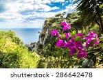 capri island in a beautiful... | Shutterstock . vector #286642478