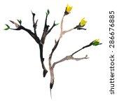 watercolor brush in blossom | Shutterstock .eps vector #286676885