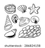 sea shells doodled icons ...