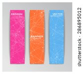 vector template of banner with... | Shutterstock .eps vector #286895012