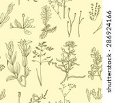 vector seamless pattern with... | Shutterstock .eps vector #286924166