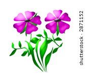 flowers and leaves on  white ... | Shutterstock . vector #2871152