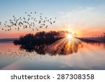 birds silhouettes flying above... | Shutterstock . vector #287308358