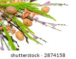 Spring colorful flowers on a white background - stock photo