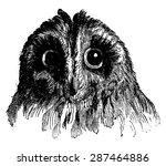 owl  vintage engraved... | Shutterstock .eps vector #287464886