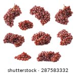 branch of the dark grape... | Shutterstock . vector #287583332