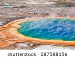 Bird View Of Grand Prismatic...