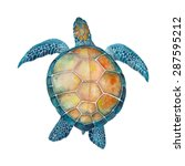 watercolor sea turtle | Shutterstock .eps vector #287595212