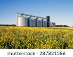 Four Silver Silos In A Wheat...