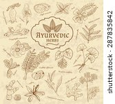 retro illustration of ayurvedic ... | Shutterstock .eps vector #287835842