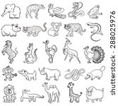 Cute Zoo Animals Collection....