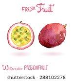bright vector watercolor fruit... | Shutterstock .eps vector #288102278