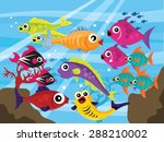 Colorful School Of Fish...