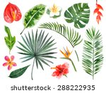 large hand drawn watercolor... | Shutterstock .eps vector #288222935