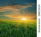 green field and beautiful sunset | Shutterstock . vector #28822624