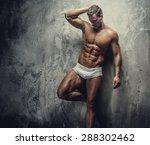 muscular fitness model guy in...   Shutterstock . vector #288302462